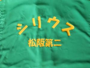 20100101_3138